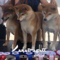 Nana, Chika & Rada at Gibraltar